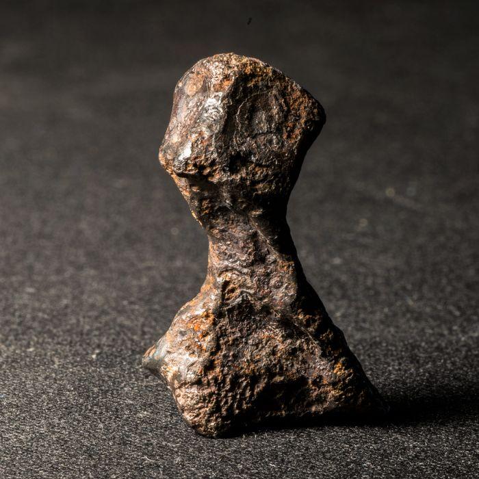 Je bekijkt nu Sikhote-Alin meteoriet uit 1947