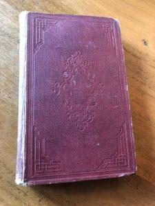 Lees meer over het artikel Schoedlers boek der natuur – 1877
