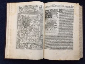 Lees meer over het artikel Andere prachtige oude speciale boeken