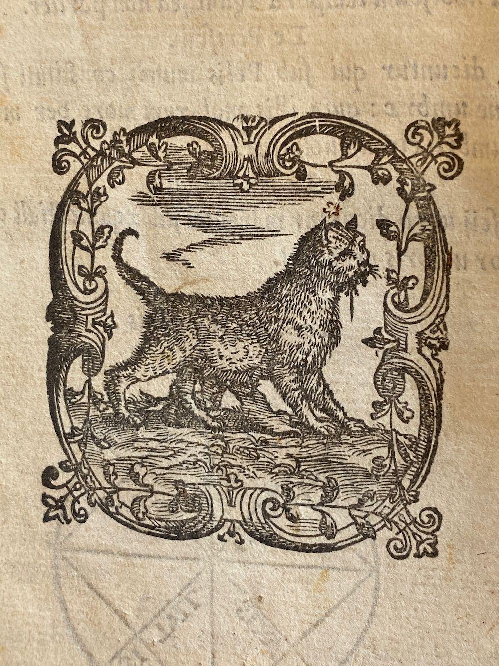 Je bekijkt nu Cosmographiae Introductio – 1551 INGEZIEN