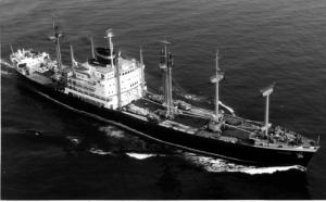 Lees meer over het artikel Koopvaardijschepen de Batjan en de Celebes